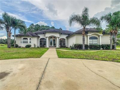 Clermont Single Family Home For Sale: 6515 Duboise Drive