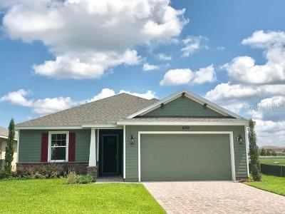 Lake County, Orange County, Osceola County, Seminole County Single Family Home For Sale: 5215 Rambling Road
