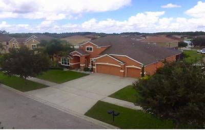 Saint Cloud Single Family Home For Sale: 3794 Marietta Way