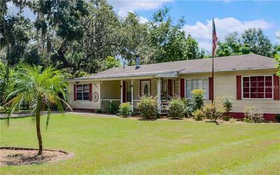 Mount Dora Single Family Home For Sale: 916 E 11th Avenue