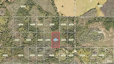 Clermont Residential Lots & Land For Sale: 0 Calvin Lee Road