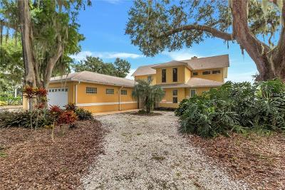 Kissimmee Single Family Home For Sale: 2535 Ridgeway Drive