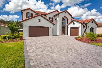Kissimmee Single Family Home For Sale: 2820 Swoop Circle