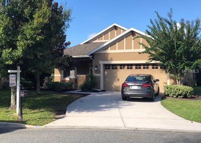 Mount Dora Single Family Home For Sale: 20824 Oldenburg Loop