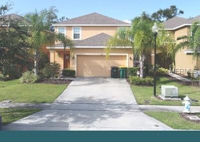 Kissimmee Single Family Home For Sale: 2654 Santosh Cove