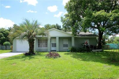 Mount Dora Single Family Home For Sale: 6916 Holly Creek Road