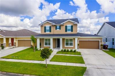 Kissimmee Single Family Home For Sale: 2987 Boating Boulevard