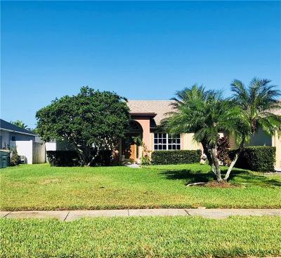 Saint Cloud Single Family Home For Sale: 3811 Gator Bay Lane