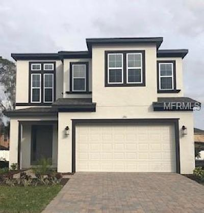 Kissimmee Single Family Home For Sale: 1261 Arisha Drive