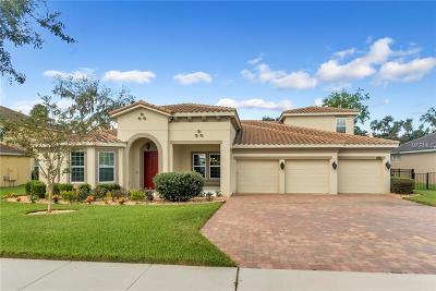 Winter Garden Single Family Home For Sale: 16034 Johns Lake Overlook Drive