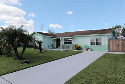 Kissimmee Single Family Home For Sale: 1317 Meadowbrook Street