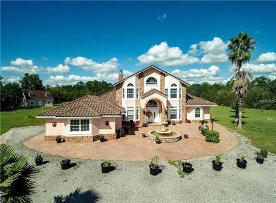 Kissimmee Single Family Home For Sale: 8111 Happy Trail