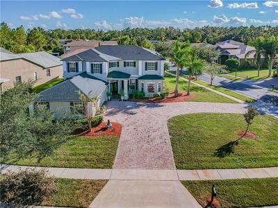 Orange County, Osceola County Single Family Home For Sale: 14408 Fawnhaven Court