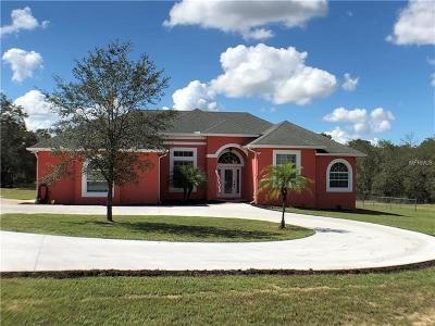 Haines City Single Family Home For Sale: 8076 Lake Hatchineha Road