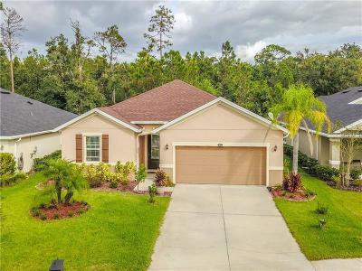Daytona Beach Single Family Home For Sale