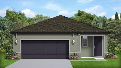 Kissimmee Single Family Home For Sale: 1331 Arisha Drive