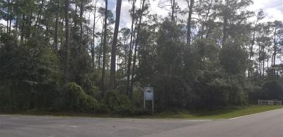 Residential Lots & Land For Sale: 13403 Lake Mary Jane Road