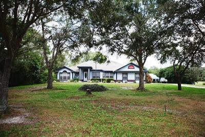 Kissimmee Single Family Home For Sale: 2951 Big Sky Boulevard