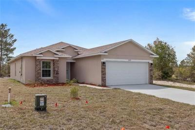 Lake County, Orange County, Osceola County, Polk County, Seminole County Single Family Home For Sale: 1933 Michigan Drive