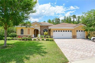 Kissimmee Single Family Home For Sale: 9053 Paolos Place