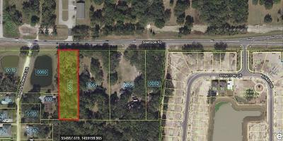 Kissimmee Residential Lots & Land For Sale: 3115 Simpson Road