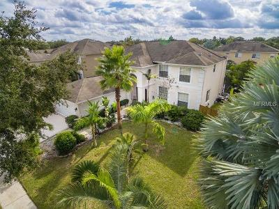 Valrico Single Family Home For Auction: 2708 Avon River Drive