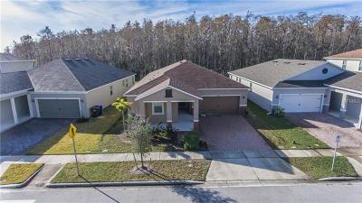 Kissimmee Single Family Home For Sale: 3480 Dovetail Avenue
