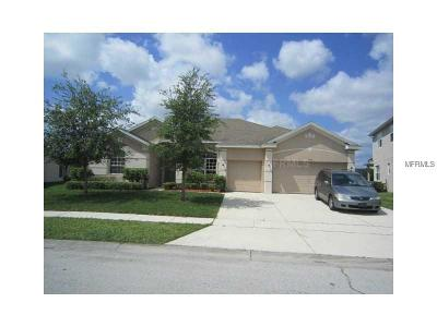 Kissimmee Single Family Home For Sale: 2840 Paige Drive