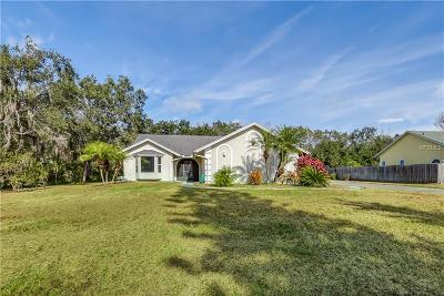 Kissimmee Single Family Home For Sale: 2201 Steffanie Court