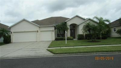 Kissimmee Single Family Home For Sale: 2880 Paige Drive