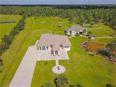 New Smyrna Beach Single Family Home For Sale: 383 Equestrians Way