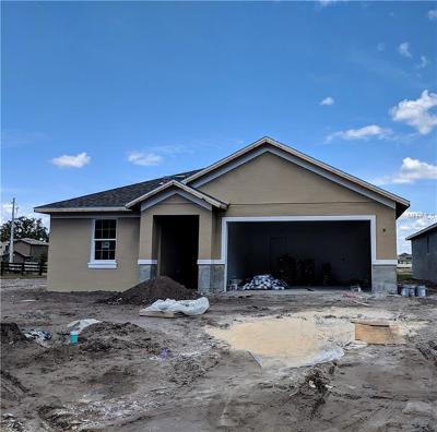 Saint Cloud Single Family Home For Sale: 5213 Tracie Way
