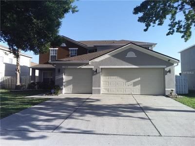Kissimmee Single Family Home For Sale: 3234 Amberly Park Circle