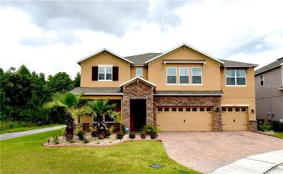 Kissimmee Single Family Home For Sale: 3899 Mt Vernon Way