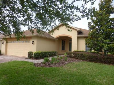 Clermont, Davenport, Haines City, Winter Haven, Kissimmee, Poinciana, Orlando, Windermere, Winter Garden Single Family Home For Sale: 356 Sorrento Road