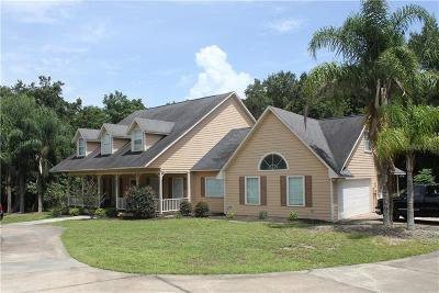 Leesburg Single Family Home For Sale: 1025 Shore Acres Drive