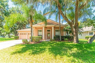 Kissimmee Single Family Home For Sale: 2301 Rambling Oaks Way