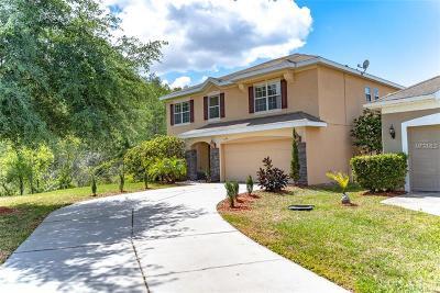 Falcon Trace Single Family Home For Sale: 14778 Grand Cove Drive #9