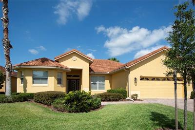 Clermont, Davenport, Haines City, Winter Haven, Kissimmee, Poinciana, Orlando, Windermere, Winter Garden Single Family Home For Sale: 241 Sorrento Road