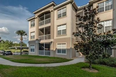 Kissimmee Condo For Sale: 3001 Laurel Park Lane #107