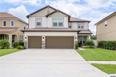 Orange County, Osceola County Single Family Home For Sale: 3373 Cordgrass Place