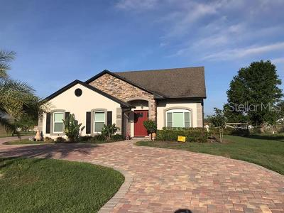 Kissimmee Single Family Home For Sale: 2920 Trevi Court