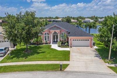 Orange County, Osceola County Single Family Home For Sale: 3316 Countryside View Drive