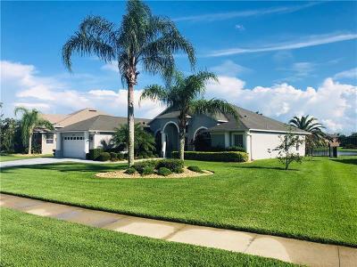 Saint Cloud Single Family Home For Sale: 3189 Bayview Lane