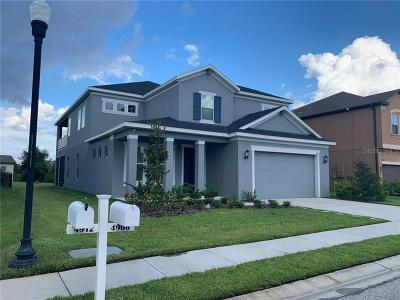 Wesley Chapel Single Family Home For Sale: 4906 Butler National Drive