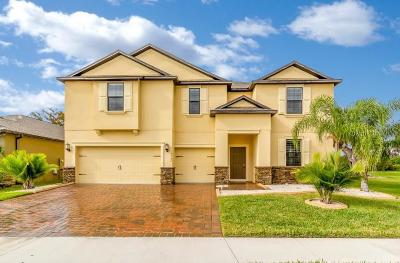 Kissimmee Single Family Home For Sale: 4332 Summer Breeze Way