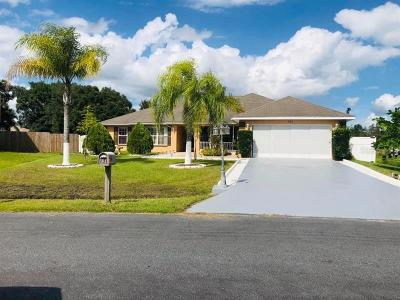 Kissimmee Single Family Home For Sale: 731 Parrot Ct