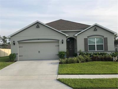 Deland  Single Family Home For Sale: 201 Wood Hollow Road