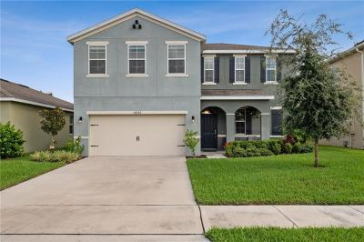 Clermont Single Family Home For Sale: 16523 Centipede Street