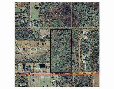 Plant City FL Residential Lots & Land For Sale: $239,900